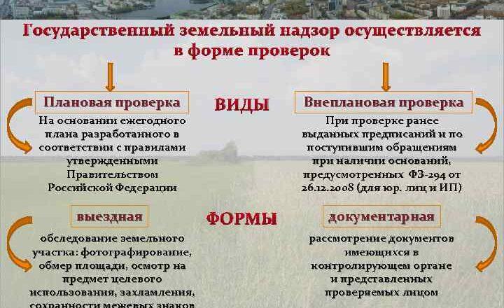 Кем осуществляется государственный земельный надзор